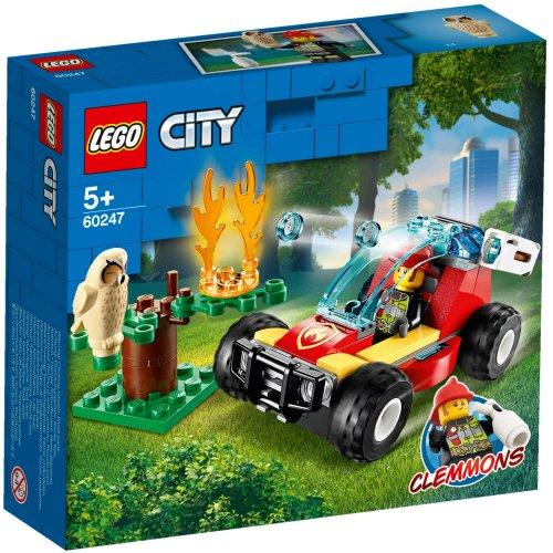 60247 Šumski požar