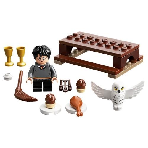 30420 Harry Potter™ i Hedviga dostava metle