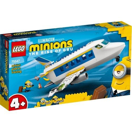 75547 Malac na pilotskom treningu